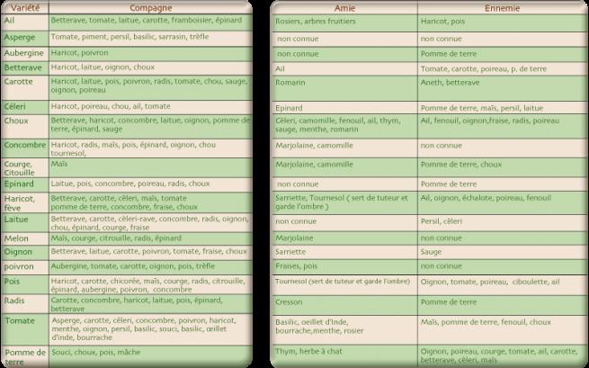 Association de plantes - Association plantes aromatiques entre elles ...